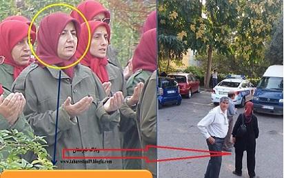 Albania-Jila_Deyhim_MEK_MKO_Maryam_Rajavi_Cult_Terrorism_Albania 260-410